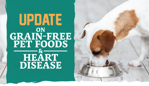 Update on Grain Free Pet Foods and Heart Disease