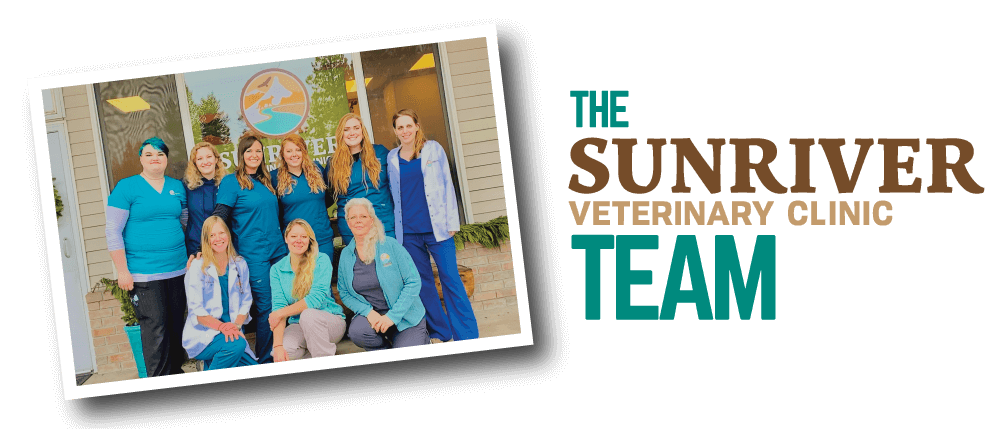 The Sunriver Veterinary Clinic Team